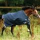 horseware-rambo-sommerdecke