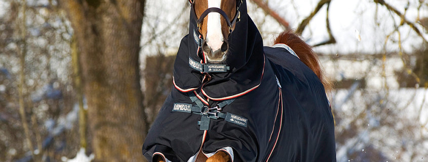 Horseware Rambo Optimo